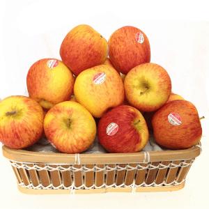 Táo Canada AMBROSIA - Vinfruits.com