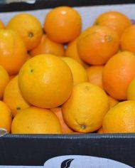 Cam vàng Ai Cập nhập khẩu – Vinfruits.com