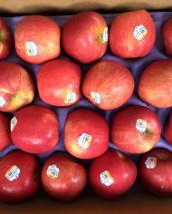 Táo Fuji Mỹ – Vinfruits.com