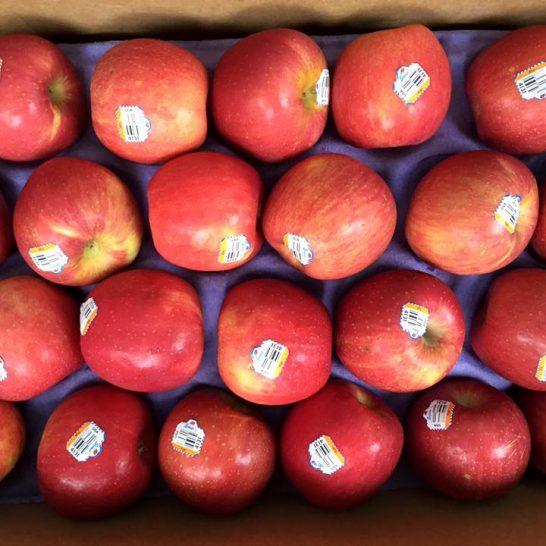 Táo Fuji Mỹ - Vinfruits.com