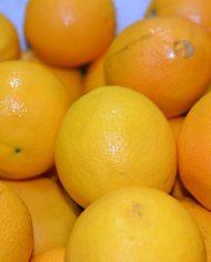 Cam Ai Cập – Vinfruits.com