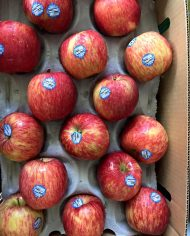 Táo Kiku New Zealand – Vinfruits.com