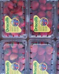 Dâu Tây Mỹ nhập khẩu – Vinfruits.com