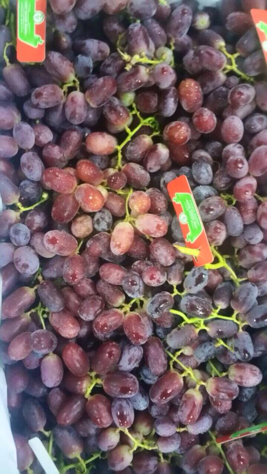 14. Nho đỏ chủng Crison Seedless Úc