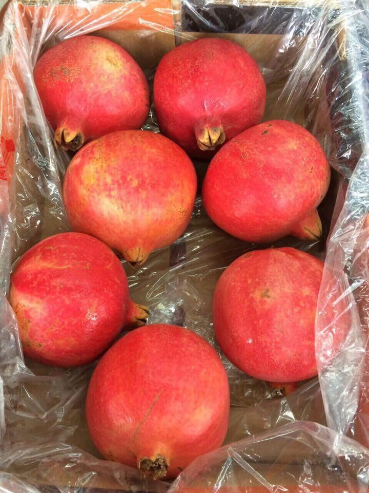 Lựu Ai Cập nhập khẩu - Vinfruits.com