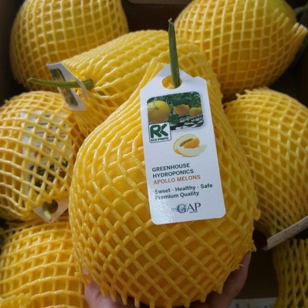 Dưa lưới Malaysia nhập khẩu - Vinfruits.com