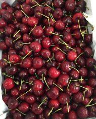 Cherry đỏ Australia nhập khẩu – Vinfruits.com