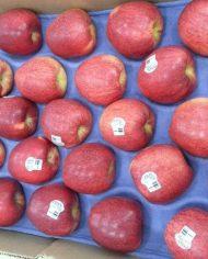 Táo Envy Mỹ nhập khẩu – Vinfruits.com