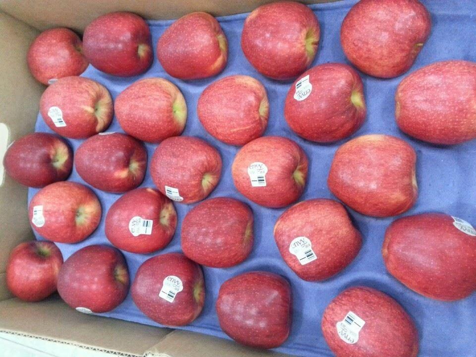 Táo Envy Mỹ nhập khẩu - Vinfruits.com