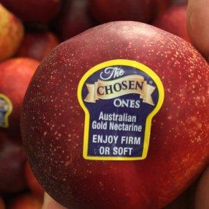 Xuân đào Úc nhập khẩu - Vinfruits.com