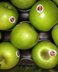 Táo xanh Granny Smith Nam Phi – Vinfruits.com