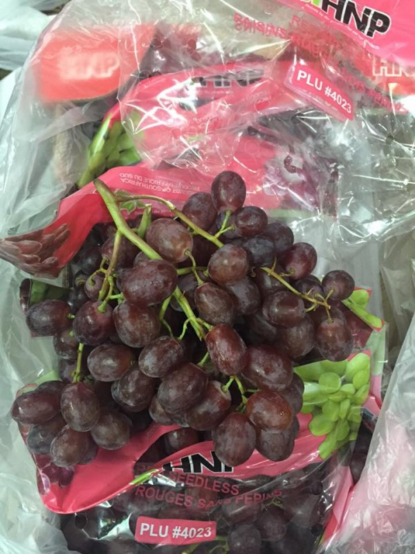 Nho đỏ không hạt Nam Phi - Vinfruits.com