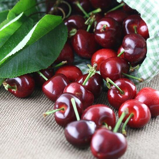 Cherry do Chi Lê - vinfruits