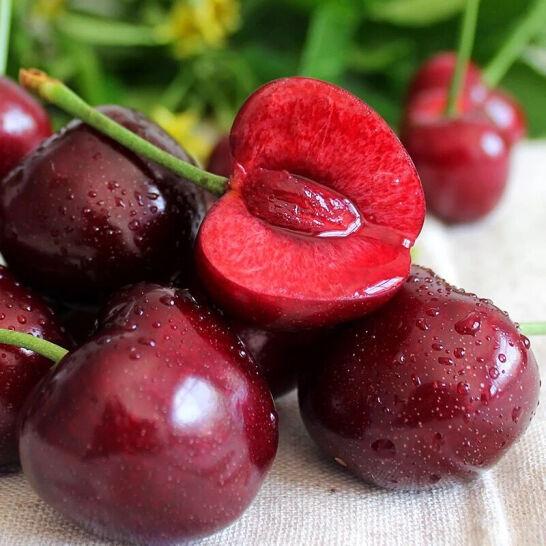 Cherry do Chile - vinfruits 6