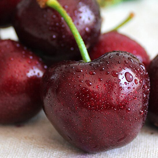 Cherry do Chile - vinfruits 7