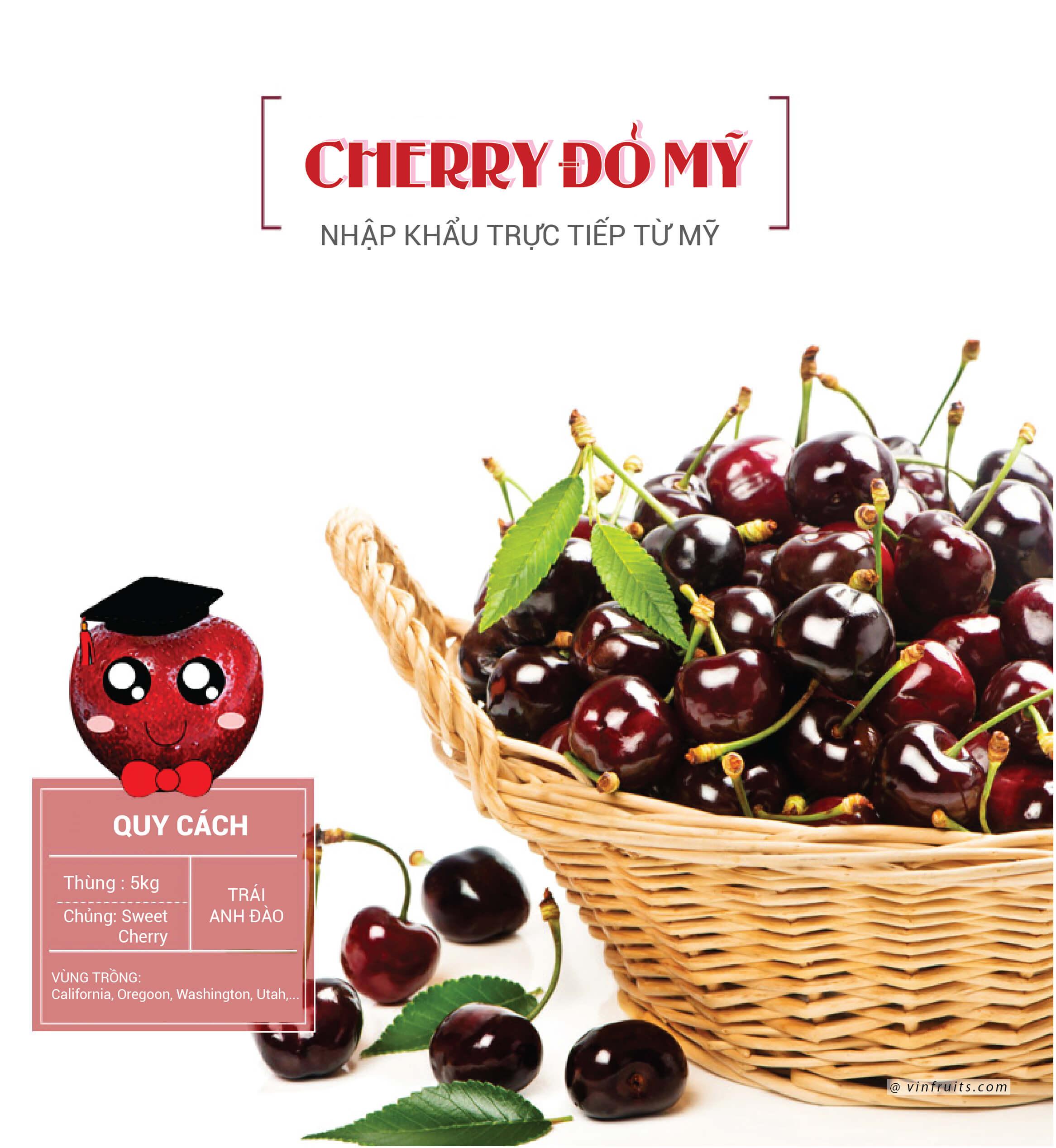 Giong cherry Mỹ - vinfruits.com 1