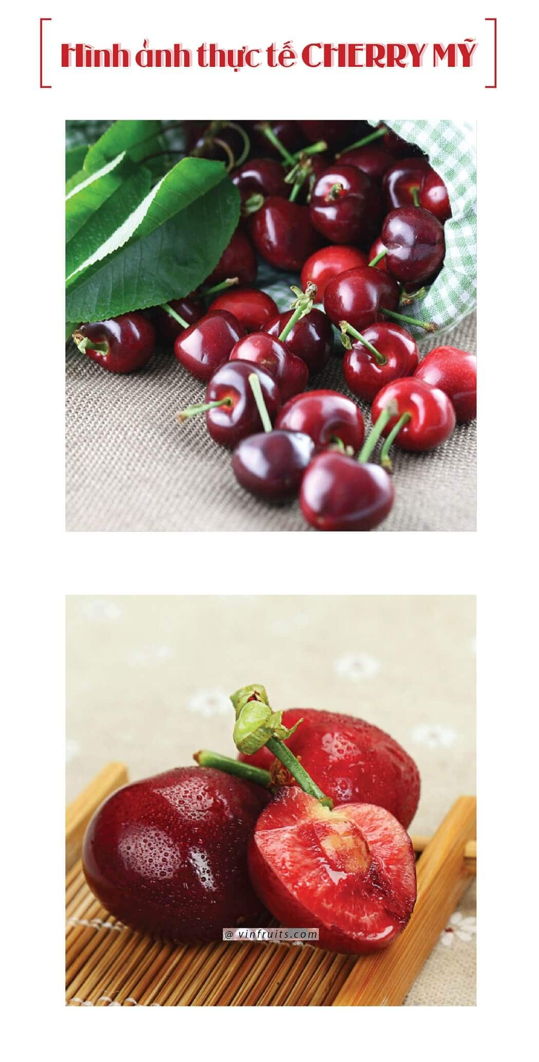 Hinh anh cherry do My - vinfruits.com 2