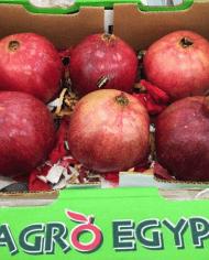 Lựu Ai Cập – Vinfruits.com