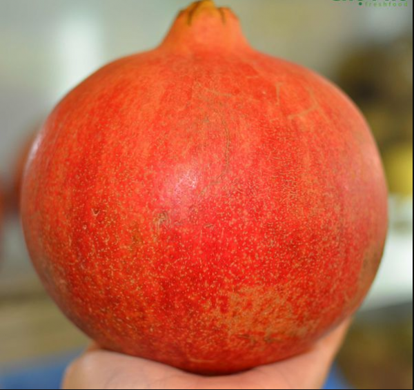 Lựu Nam Phi nhập khẩu - Vinfruits.com