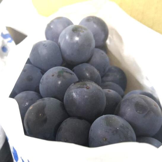 Nho ruou Han Quoc 1 - vinfruits.com
