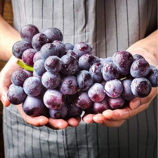 Nho ruou Pion Han Quoc - vinfruits.com 3