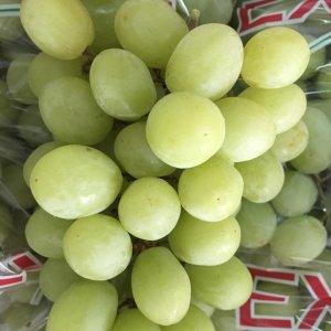 Nho xanh Nam Phi nhập khẩu - Vinfruits.com