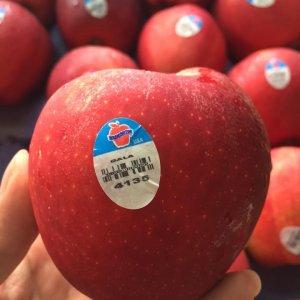 Táo Gala Mỹ - Vinfruits.com