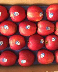 Táo Gala Mỹ nhập khẩu – Vinfruits.com