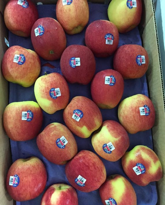 Táo Jazz New Zealand - Vinfruits.com
