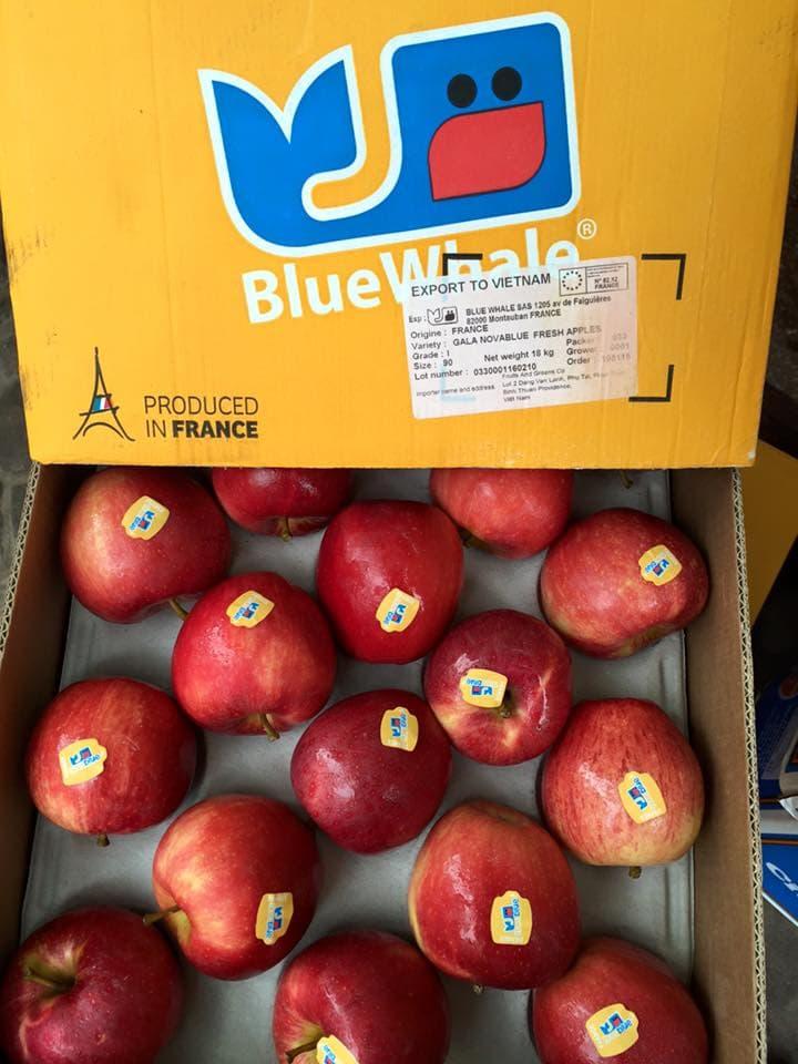 Táo Nova Blue Pháp - Vinfruits.com
