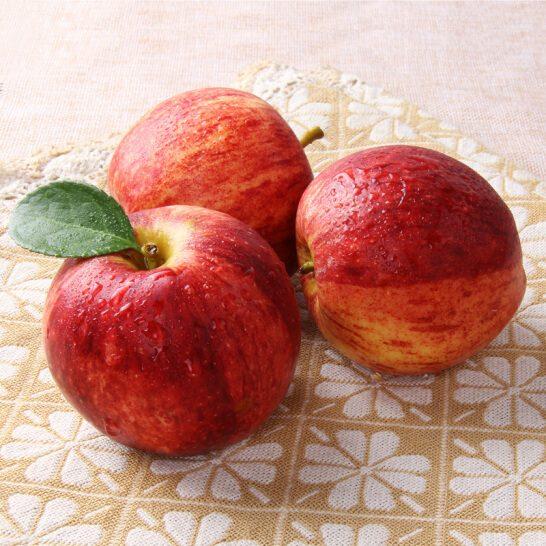 Tao Gala My - vinfruits.com 1