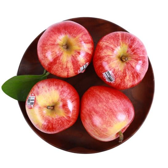 Tao Gala My - vinfruits.com 2