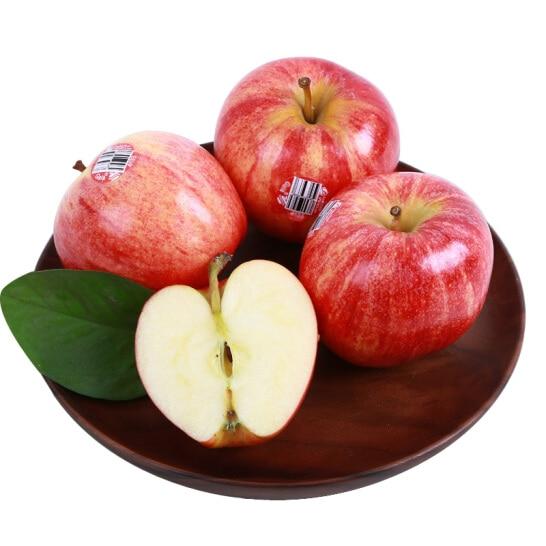 Tao Gala My - vinfruits.com 3