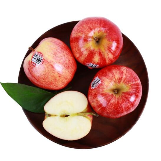 Tao Gala My - vinfruits.com 4