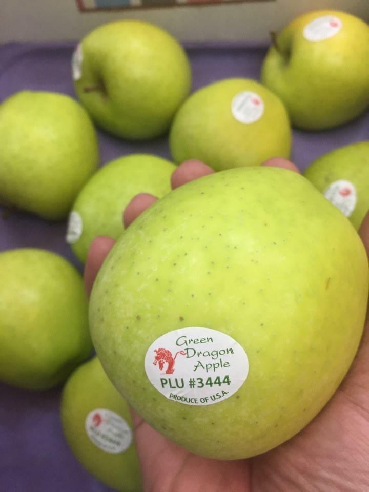 Táo xanh Green Dragon Apple Mỹ - Vinfruits.com