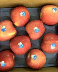 Tao Rose My – Vinfruits.com