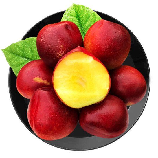 Xuan dao Uc ruot vang - vinfruits.com 4