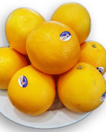 Cam Vàng Navel Nam Phi - Vinfruits.com