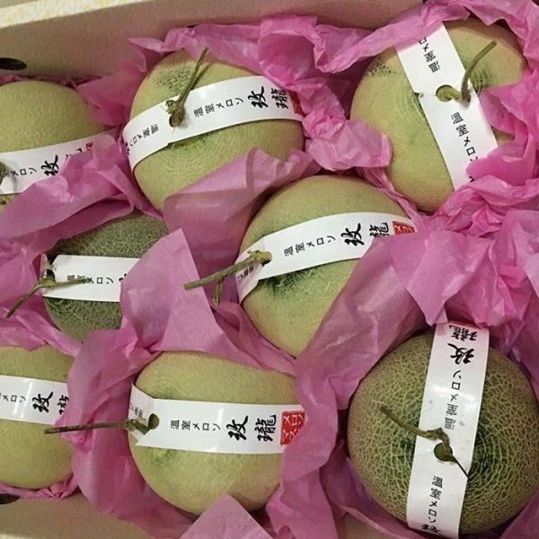 Dưa lưới Nhật - Vinfruits.com