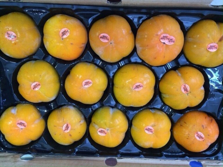 Hồng Mỹ - Vinfruits.com