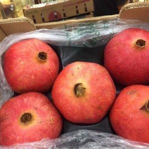 Lựu Nam Phi - Vinfruits.com