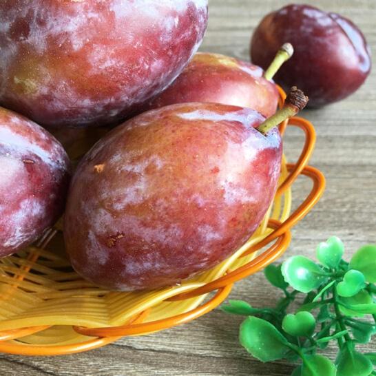 Mận đường Nam Phi - vinfruits.com 3