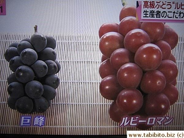 Nho ruby roman Nhật Bản
