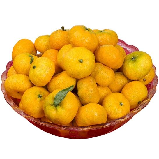 Quýt Sentoka Nhật - vinfruits.com 1