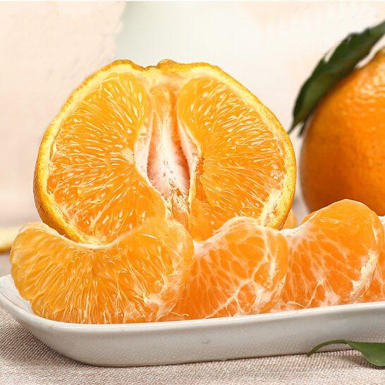 Quýt chum Nhật Bản - vinfruits.com 5