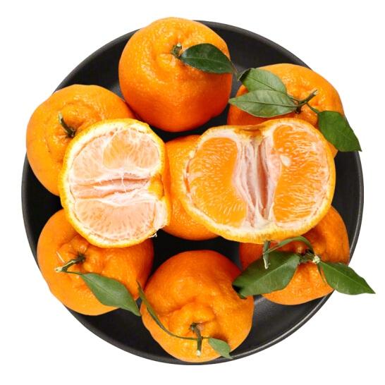 Quýt chum Nhật Bản - vinfruits.com 6