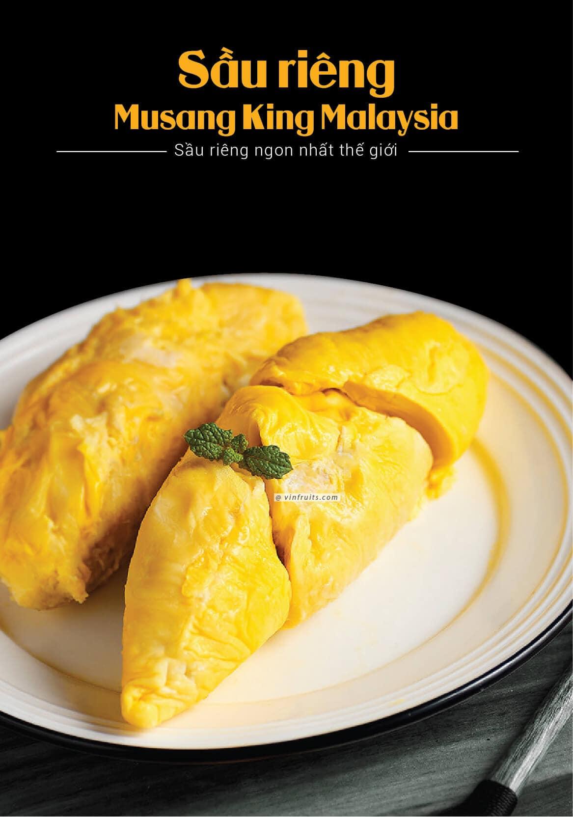 Sau rieng Musang King - vua cua cac loai sau rieng - vinfruits