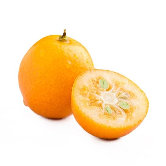 Tắc Nhật - vinfruits.com 5