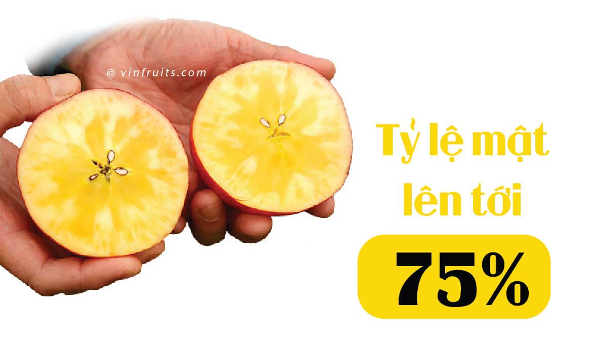 Ty le mat cua Tao mat mat troi - vinfruits