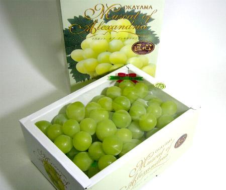 Nho xanh nhật bản - vinfruits